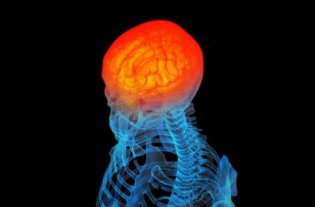 Project Be Moved - Inflammation Brain